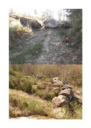 Santar - Fotos caminhos cortados.jpg