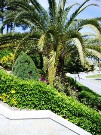 Jardins envolventes ao Nicho do Imaculado Coração de Maria