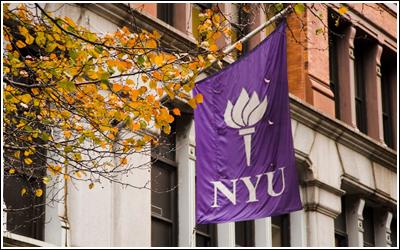 New York University 16419143_TO88d